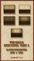 The Walls - Next Level Part 1 by malik-trey
