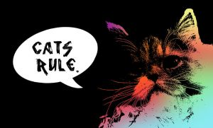 Cats Rule by thistlesis