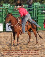 Rodeo-10 by AstriexEquineStock