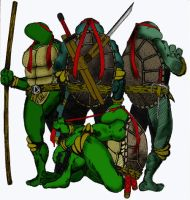 choinesu's TMNT by rc212