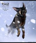 1942 - The Captain's Dog by BlueHunter