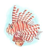 Lion fish by Tenshidream