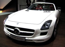 SLS AMG Roadster by toyonda
