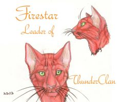 Firestar Faces by MudstarMord-Sith