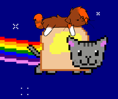 Nyan Cat and Me by Stealthfire231