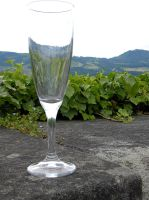 Champagne glass by Agatje
