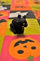 HB 5: Little Black Cat by Misty-Dawn