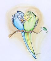 Parakeet Heart by SophieDragon