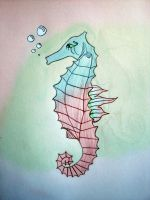seahorse by tailsxo