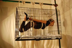 Hogtie extreme - Over the Top by DrFatso