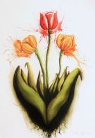 Tulips by User-404