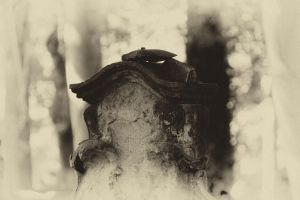 Old Gravestone by Misfortuna
