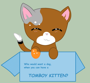 Tomboy Kitten, you ask? by DulcetIceCocoa