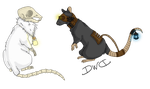 Rats by DarkWolfDragon