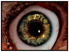 another eye with a clock in it by tweeny
