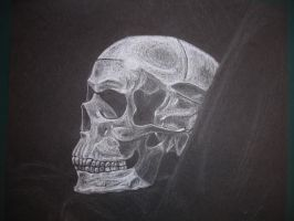 white on black skull by mwill8886