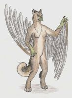anthro gryphon by pariahpoet