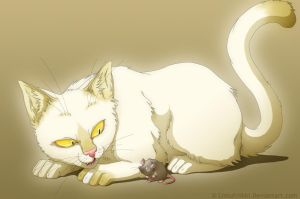 Cat and mouse by Lintufriikki