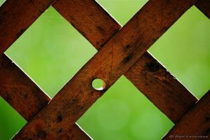 Knot hole by imonline