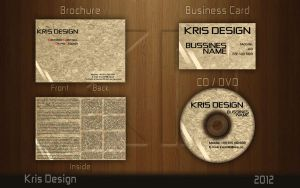 Wizytowka Broszura Business Card Brochure CD DVD by Krisu00r34