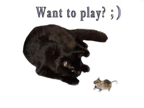 Want to play? by PAmntngrl