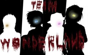 Team wonderland-silhouette by 16pyres