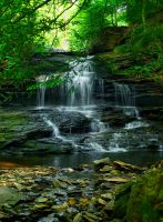 Rickett's Glen 6 by Dracoart-Stock