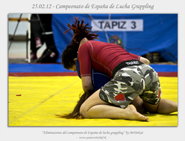 Grappling 01 by MrDeKat