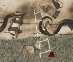 Love is a Barbed Wire Fence by wdnest