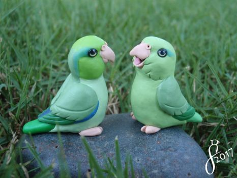 Green Parrotlet Pair by The-Wandering-Bird