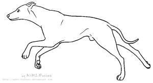 Lineart - Greyhound by ANBU-Flashez