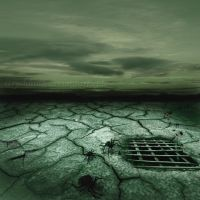 the hole by strychnina