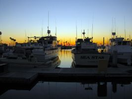 Oceanside Harbor by LVI56
