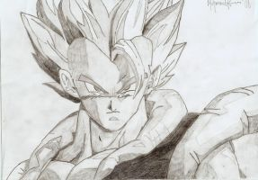 Gogeta by myworldmycapture