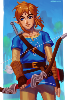 BotW: Link by Carcoiatto