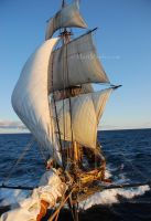 The Brig Niagara by mfmaples