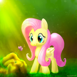Fluttershy by humbertomena