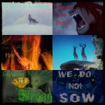 Game Of Thrones House Sigils And Words by ShamanGirl1