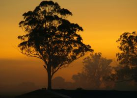 Kemps Sunrise by FireflyPhotosAust