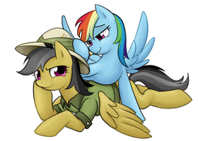 Rainbow Dash with Daring Do by norang94