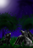 Under the night sky by AbsolGuardian
