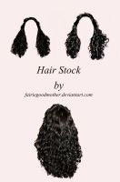 Hair Hair and more Hair Stock by FairieGoodMother
