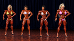 FBB Muscle Contest by Siberianar