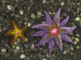 Staryu and Starmie by RtRadke