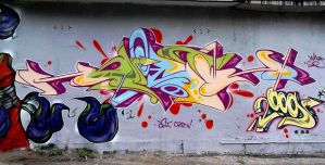 DST 25 by Wator