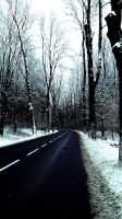 winter road trip by alexainen