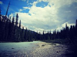 The World From My View by allyalltheway