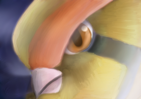 Pidgeot Close Up by QuietCrystal