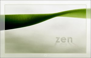 zen by mental