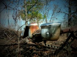 Abandoned Carwreck part 9 by TheProdigy100